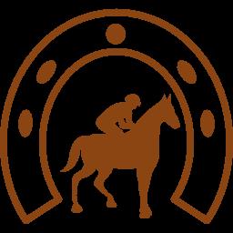 Paarden pension